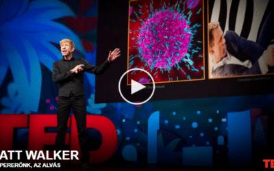 Matt Walker | Szupererőnk, az alvás