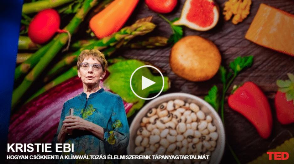 Kristie Ebi: Hogyan csökkenti a klímaváltozás élelmiszereink tápanyagtartalmát